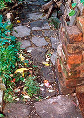 Path in front of Millennium Shed, November 1998.