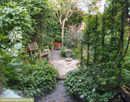 garden-view-from-window-2-040913-800.jpg